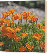 547 Cf Orange Green And Gray Wood Print