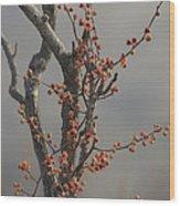 569 Wood Print