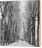 Pere-lachais Cemetery In Paris France Wood Print