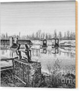Abandoned Sugarmill Wood Print