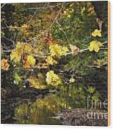 Autumn 2013 Wood Print