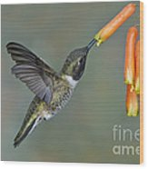 Black-chinned Hummingbird Wood Print