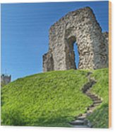 Christchurch Castle Wood Print