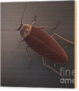 Cockroach Wood Print