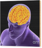 Conceptual Image Of Human Brain Wood Print