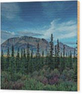 Denali Highway, Route 8, Offers Views Wood Print