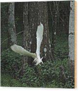 Egret Wood Print