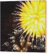 Fireworks Art Wood Print