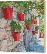 Flower Pots 2 Wood Print
