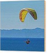 Flying Wood Print by Elijah Weber