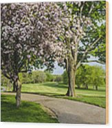 Forest Akers - Blooming Wood Print