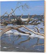 Hunting Island  Wood Print