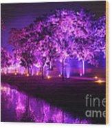 Illumina Light Show At Schloss Dyck Germany Wood Print by David Davies