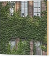 6 Ivy Windows Wood Print