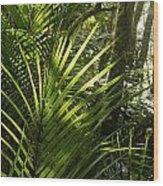 Jungle Light Wood Print
