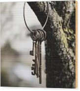 Keys Wood Print