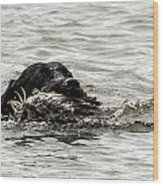 Labrador Retriever Wood Print