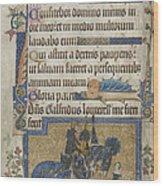 Luttrell Psalter Wood Print