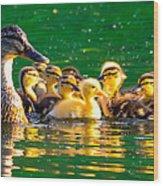 Mallard Mom Wood Print