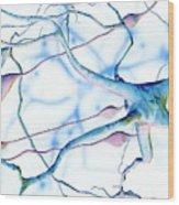 Nerve Cells Wood Print