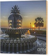Sun Rays Over Waterfront Park Wood Print