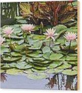 6 Pink Waterlilies Wood Print