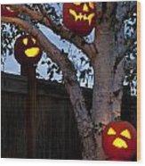 Pumpkin Escape Over Fence Wood Print