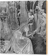 Queen Victoria (1819-1901) Wood Print