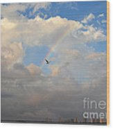 6- Rainbow And Seagull Wood Print