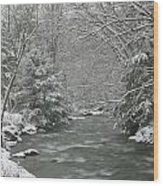 Snow Covered Pine Trees On The Side Of A River In The Winter. Wood Print