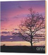 Spectacular Sunset Epsom Downs Surrey Uk Wood Print