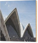 Sydney Opera House Detail In Australia  Wood Print