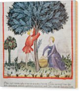 Tacuinum Sanitatis, Medieval Health Wood Print