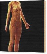 The Skeletal System Female Wood Print