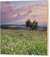 Tuscany Wood Print by Brian Jannsen