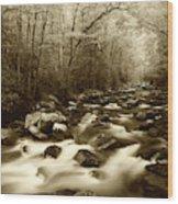 Usa, North Carolina, Great Smoky Wood Print