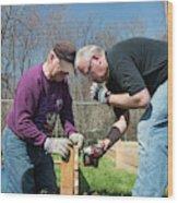 Volunteers Building Raised Beds Wood Print