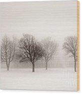 Winter Trees In Fog Wood Print by Elena Elisseeva