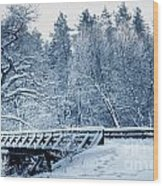 Winter White Forest Wood Print