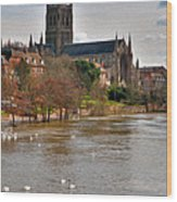 Worcester Cathedral And Swans Wood Print