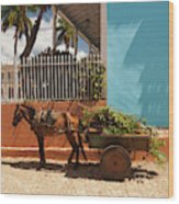 Cuba, Sancti Spiritus Province Wood Print