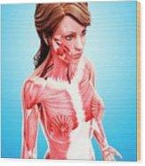 Female Musculature Wood Print