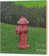 62- Puppy Garden Wood Print