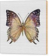 63 Great Nawab Butterfly Wood Print