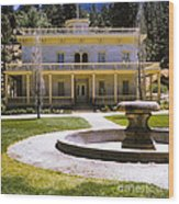 660 Sl Bowers Mansion  Wood Print
