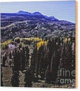 662 Sl In A Purple Haze Wood Print
