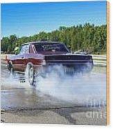 6689 Esta Safety Park 09-07-14 Wood Print