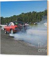 6707 Esta Safety Park 09-07-14 Wood Print