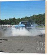 6732 Esta Safety Park 09-07-14 Wood Print