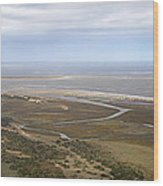 Aerial Near Jekyll Island Wood Print